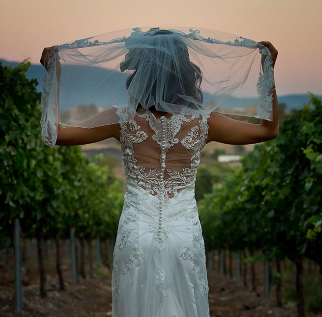 Wedding at a vinery in Temecula